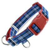 Custom Martingale Dog Collar with Buckle, shown with Optional Sewn-in D-ring