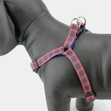 Plaid Step In Dog Harness, No-Choke, Adjustable, Fraser Tartan, Side view