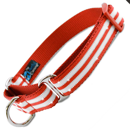 Holiday martingale Collar, Christmas Bling Stripe