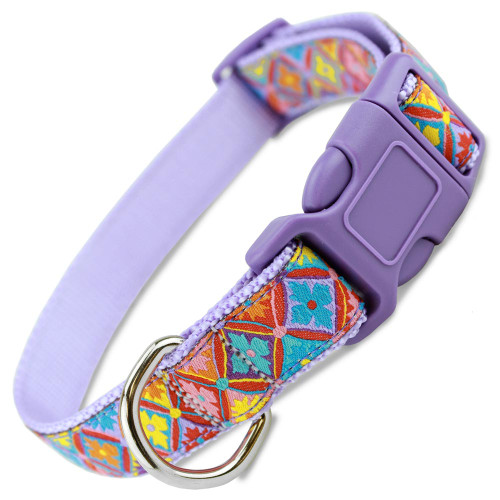 Spring Floral Dog Collar, Easter Dog Collar, colorful