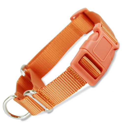 Orange Martingale with Quick release buckle, Orange plastic buckle and adjuster