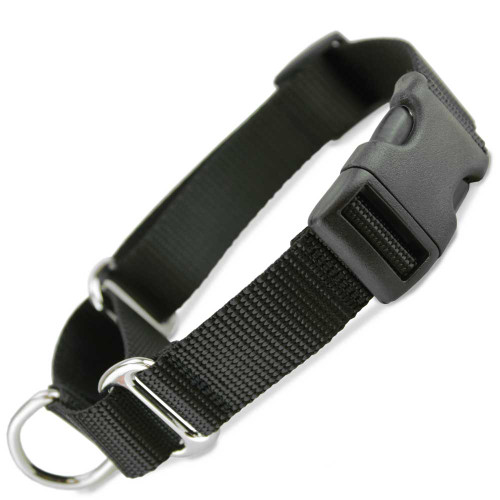 martingale collar with buckle quick release martingale