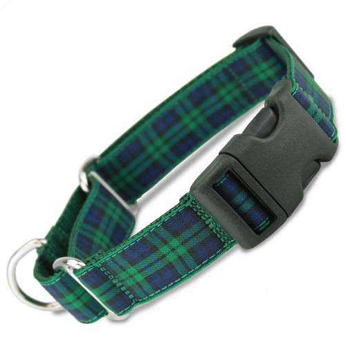 Blackwatch tartan, navy blue and green plaid, quick release buckle, buckle martingale collar, limited slip collar