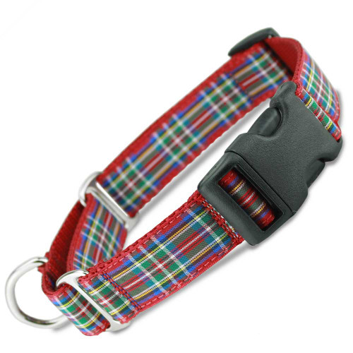 Martingale Collar with buckle, quick snap, Scottish Plaid Buckle Martingale