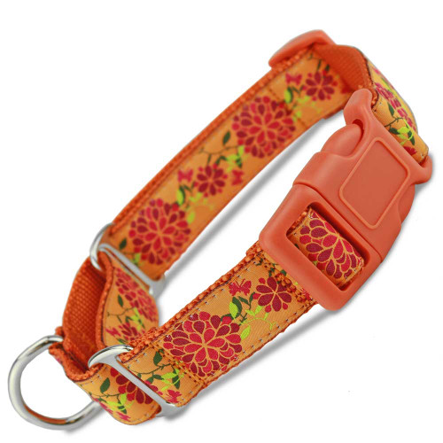 Summer Blossom Floral Buckle Martingale dog Collar, Limited Slip, Safety Collar