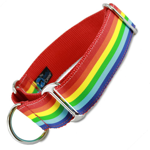 "1.5"" wide martingale collar in rainbow stripe design"