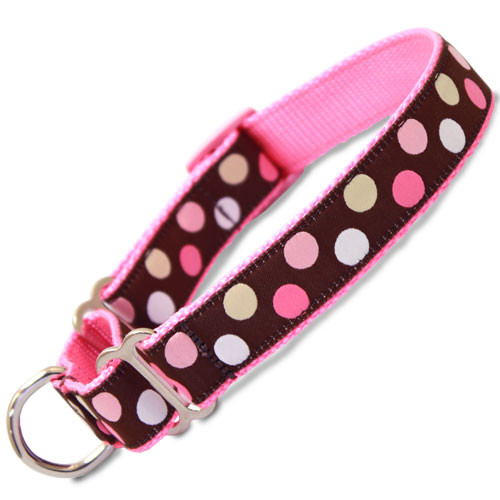 pink polka dot martingale collar, pink and brown