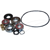 Bearing & Gasket Kit for Belle Tubmix 50 - 163.0.081