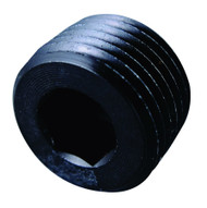 1/8in NPT Allen Head Pipe Plug