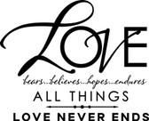 LOVE NEVER ENDS vinyl wall art sticker saying family words decor