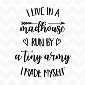I Live in a Madhouse Run by a Tiny Army I made Myself vinyl wall sticker family fun