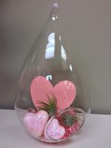 Valentine Terrarium