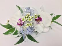 2 Bloom Phalaenopsis Orchid Corsage