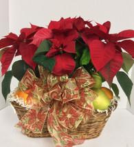 Fresh Fruit & Poinsettia Basket