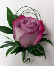 Lavender Rose and Beargrass Loops Boutonnière