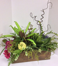 Large Silk Succulant Box with Zinnias and Kiwi Branches
