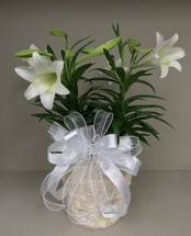 Easter Elegance double basket of Easter Lilies
