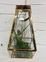 """16"""" Gold Metal Succulent Lantern"""