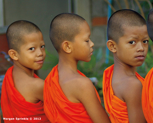 Thungyao, Trang Province, Thailand  To learn about Buddhism, Thai boys spend part of their summer vacation living and training with monks in Thailand's many temples. After early morning meditation, these boys walk with the monks through the village of Thungyao, waiting for food to be spooned into their bowls by villagers who, following Buddhist tradition, provide food to the monks as a way to make merit in the world.  Photo © 2012 Morgan Sprinkle; featured in the 2016 International Calendar