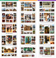 we all International Posters - Complete Collection (Laminated)