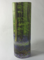 Bluebell Forest Scatter Tube - up to 20 kgs