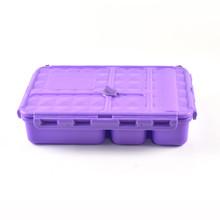 Go Green Snack Box - Purple
