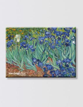 Van Gogh Magnet - Irises