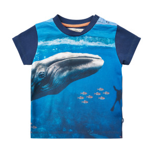 Minymo | T-Shirt | 9m-18m | 130839-7520