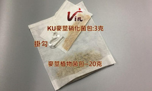 KU germ and Barley tea bags