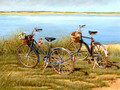 AVG11945 Anniversary Card - Bicycles