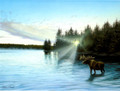 BKG44937 Blank Card - Lake with Moose