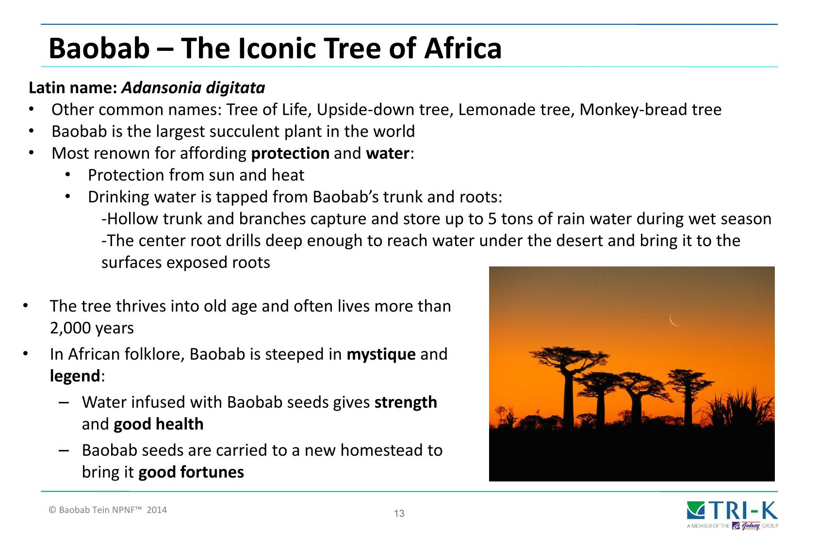 final-baobab-tein-npnf-global-presentation-4.2014-000013.jpg
