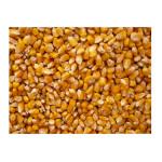 Grains Popcorn Yellow (1x5LB )