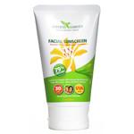 Goddess Garden Organic Sunscreen Facial SPF 30 Lotion (1x3.4 Oz)