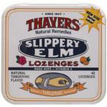 Thayer's Rose Hips Tangerine Slippery Elm LOzenges (10x42 ct)