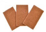 Full Circle Home Scour Pads Neat Nut Walnut Shell (6x3 Count)