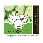 Seedballz Cucumber (1x 4 Oz)