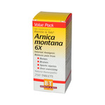 Boericke and Tafel Arnica Montana 6x (1x250 Tablets)