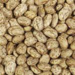 Beans Pinto Beans (1x25LB )