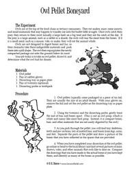 Owl Pellet Boneyard PDF