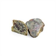 Dinosaur Poop (Coprolite)