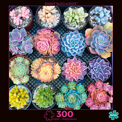 Photography Sweet Succulents 300 Large Piece Jigsaw Puzzle Box