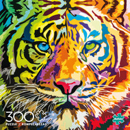 Stripes of Color 300  box