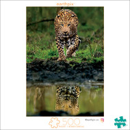 Earthpix The Allure of the Untamed 500 Piece Jigsaw Puzzle Front