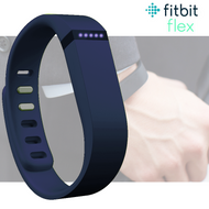 Fitbit Flex Fitness Activity Tracker Pedometer - Purple - Small & Large Straps