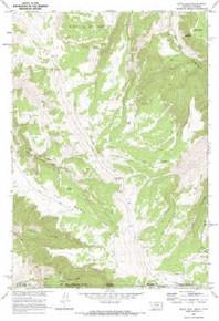 7.5' Topo Map of the Bear Hole, MT Quadrangle