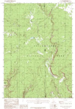 7.5\' Topo Map of the Buffalo Lake, ID Quadrangle
