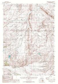 7.5' Topo Map of the Horner Creek, WY Quadrangle