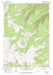 7.5' Topo Map of the Ice Creek, WY Quadrangle