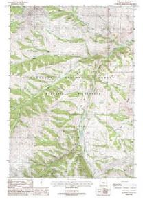 7.5' Topo Map of the Irish Rock, WY Quadrangle